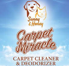 Rug Doctor Discount Coupons Amazon Com Carpet Miracle Carpet Cleaner And Deodorizer