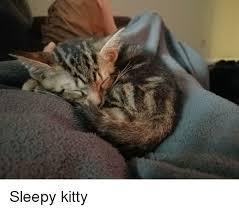 Sleepy Kitty Meme - kitty and kitty meme on me me