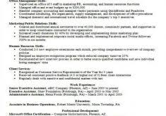 Skill Based Resume Examples by Fantastical Professional Profile Resume Examples 10 Profile On
