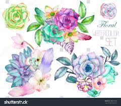 decorative bouquets watercolor floral elements succulents stock