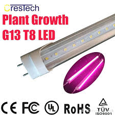 what color light do plants grow best in best light for plant growth kind of plants in the aquarium does blue