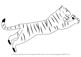 learn how to draw a tiger for big cats by drawing