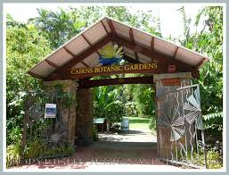 Cairns Botanical Garden by Cannonball Tree Jessica U0027s Nature Blog