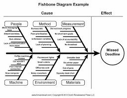 fishbone graphic organizer template eliolera com