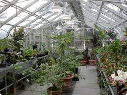 Metal Greenhouse Benches Greenhouse Benches Gravel Rolling Fixed Benches Solar