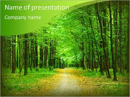beautiful green forest in summer powerpoint template u0026 backgrounds