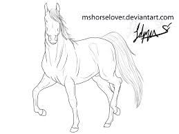 rearing arabian horse coloring pages arabian lineart by kholran
