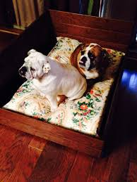 Dogs On Laminate Floors Dog Bed Made From Leftover Hardwood Floors For The Home
