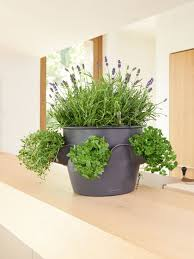 self watering herb planter cascadino stack or hang self watering gardeners com