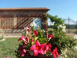 the tuscan house lajatico the tuscan dream il fienile country house with pool
