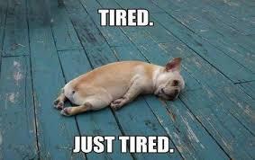 So Tired Meme - so tired funny good night meme ilove messages