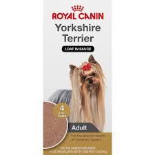 royal canin breed health nutrition yorkshire terrier loaf in sauce