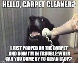 Carpet Cleaning Meme - hello carpet cleaner really cheap carpet cleaning