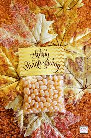 28 best thanksgiving images on jelly beans jelly
