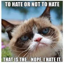 Funny Grumpy Cat Meme - funny grumpy cat meme imglulz