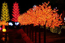 led trees lih tian flickr
