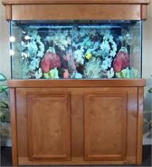 r j enterprises fusion 50 gallon aquarium tank and cabinet r j aquarium stands and canopies fish tanks direct