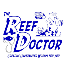 Home Design Store Nashville The Reef Doctor Custom Aquarium Design And Maintenance