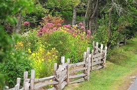 Cottage Garden Design Ideas by Cottage Garden Design Ideas Photos The Garden Inspirations