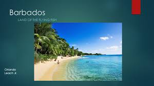 Barbados Flag Meaning Barbados Land Of The Flying Fish Orlando Leach Jr Ppt Download