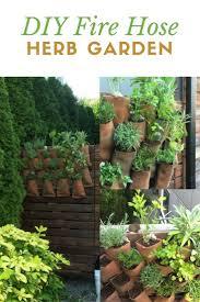 167 best herb gardening images on pinterest herb gardening