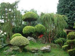 the 25 best small japanese garden ideas on pinterest japanese