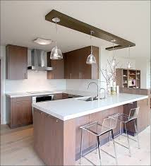 Best Kitchen Cabinet Brands Kitchen Best Kitchen Designs Modern Kitchen Cabinet Hardware