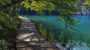 landscape nature walkway trees water lake ripples wallpapers