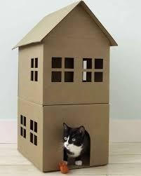 bagno per cani la casa e gli animali domestici crea ti dice come cabine armadio