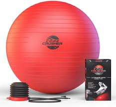 top 10 best stability balls reviewed in 2016
