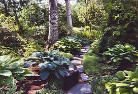 Shady Backyard Landscaping Ideas Shade Garden Design Gardenforums Com