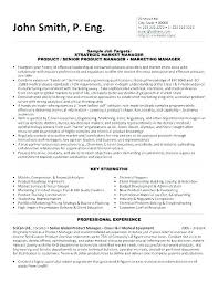 resume exles marketing marketing executive resume marketing executive resume best