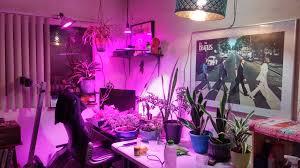 my indoor grow room album on imgur