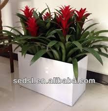 Square Planter Pots by Square Plant Pots Rectangular Plastic Pots Garden Flower Pots