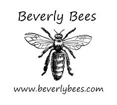 welcome to the hive beverly bees