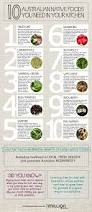 noosa native plants infographic top 10 native australian foods you need in your