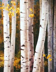 quaking aspen tree trunks white and gold giclee print this beautiful print will make a wonderful focal point on your wall at home or the office