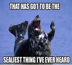Navy Seal Meme - seal meme 28 images seal memes so cool youtube squeamish seal