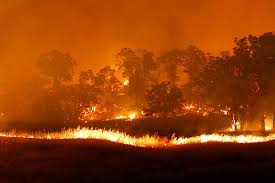 California Wildfires Global Warming by California Drought Forest Fires And Greenhouse Gas Effects U2013 Johnwhye