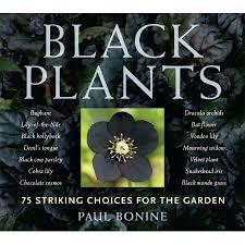 best 25 flowers for garden ideas on pinterest flower beds