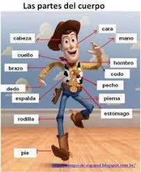las partes del cuerpo para niños our body parts in spanish for