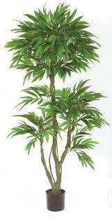 artificial outdoor mango trees
