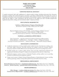 Resume Personal Background Sample by Resume Employment History Examples Resume Formats With Examples