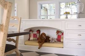Different Kinds Of Laminate Flooring Choosing The Best Type Of Flooring For Dogs And Their Owners