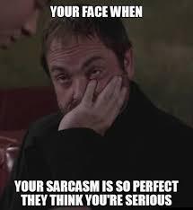 Sarcastic Meme - sarcastic memes
