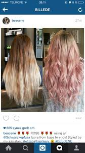 17 best hair fun images on pinterest hair goals blondes and