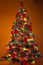 colored christmas tree lights clear or multi color christmas tree lights how about both with