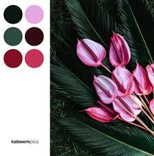kaboomcolors your weekly colors inspiration no 1 u2013 kaboompics blog