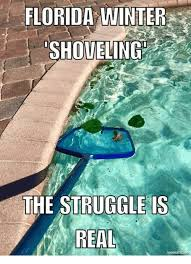 The Struggle Is Real Meme - florida winter shoveling the struggle is real mematicine meme on