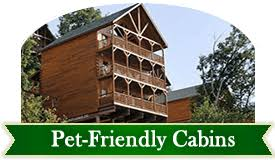 6 bedroom cabins in pigeon forge forge cabins in pigeon forge tennessee